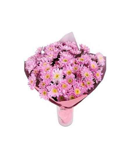Crizanteme roz