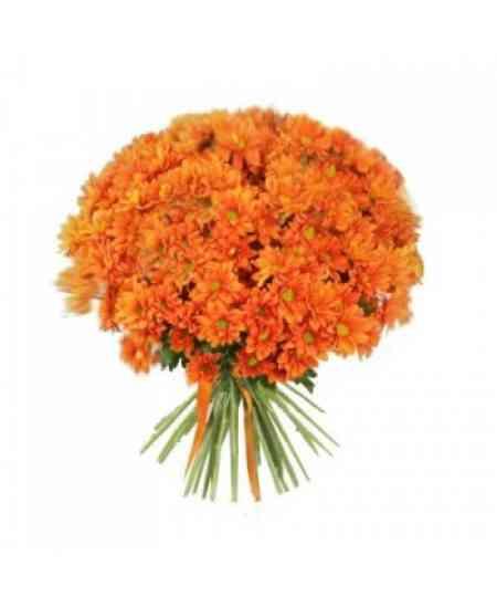 Оранжевые хризантемы