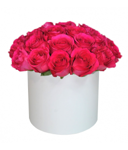 White box of 25 pink roses PREMIUM