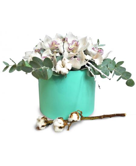 Cutie din 11 orhidee albe