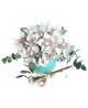 Box of 11 white orchids