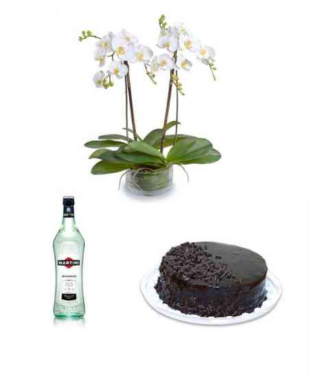 "Huge white Orchid + Martini ""Bianco"" + Cake ""Black Prince"""
