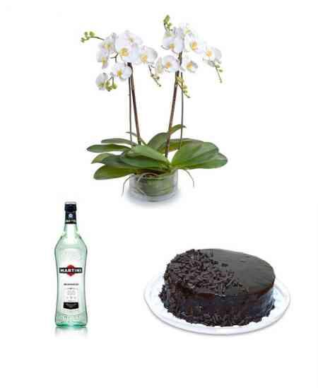 "Orhidee albă gigant + Martini ""Bianco"" + Tort ""Principele Negru"""