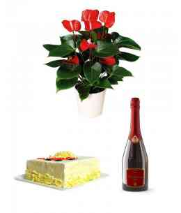 "Big red Anthurium + Champagne ""Bacio di Bolle"" + White chocolate cake"