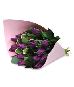 Bouquet of purple tulips in pink paper