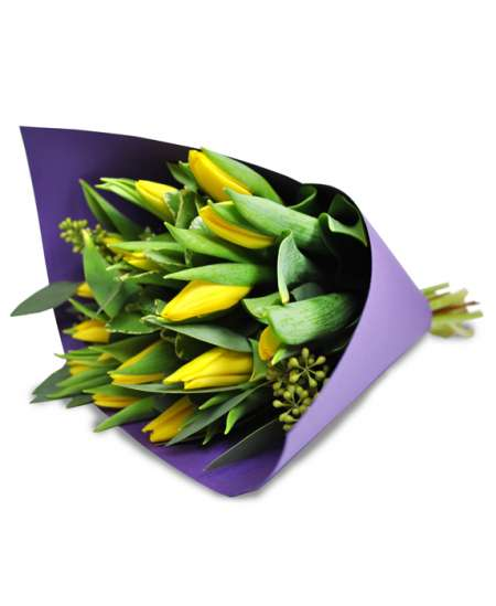 Bouquet of yellow tulips in purple paper