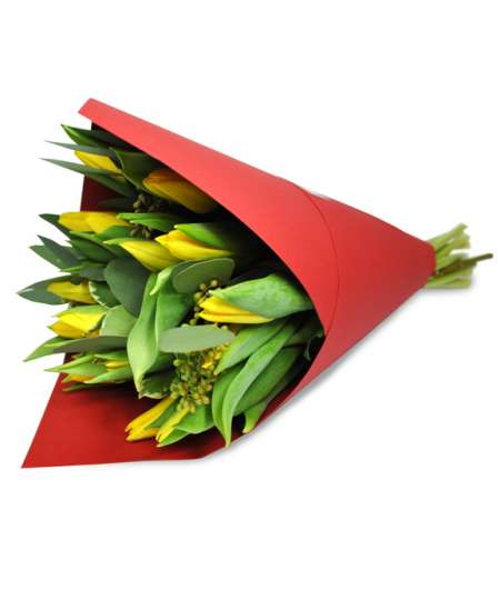 Bouquet of yellow tulips in red paper