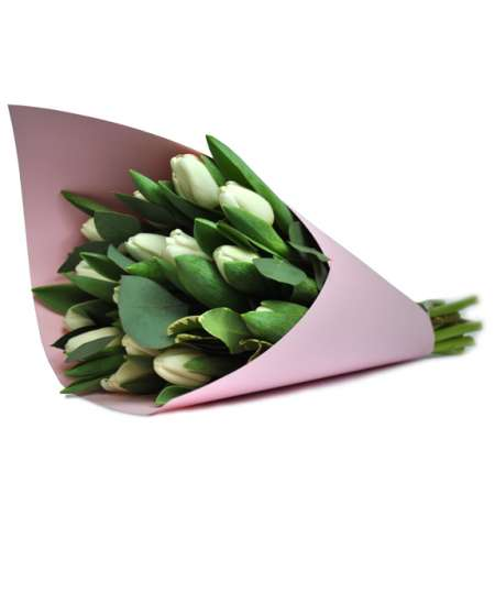 Bouquet of white tulips in pink paper