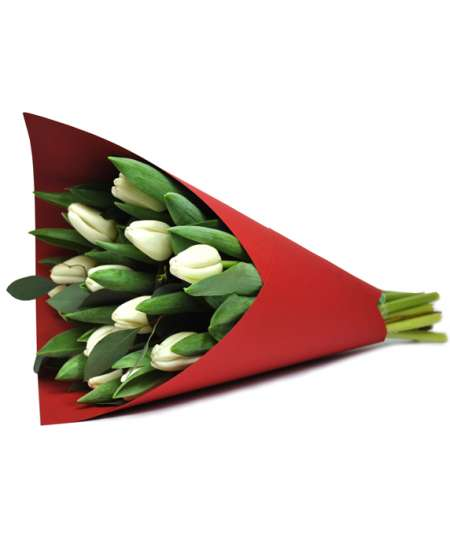 Bouquet of white tulips in red paper