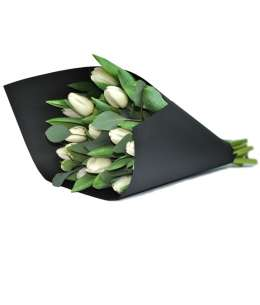 Bouquet of white tulips in black paper