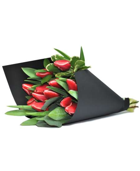 Bouquet of red tulips in black paper