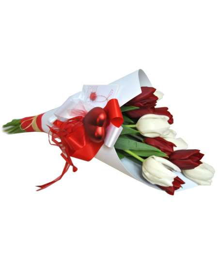 Bouquet of red and white tulips in white craft paper