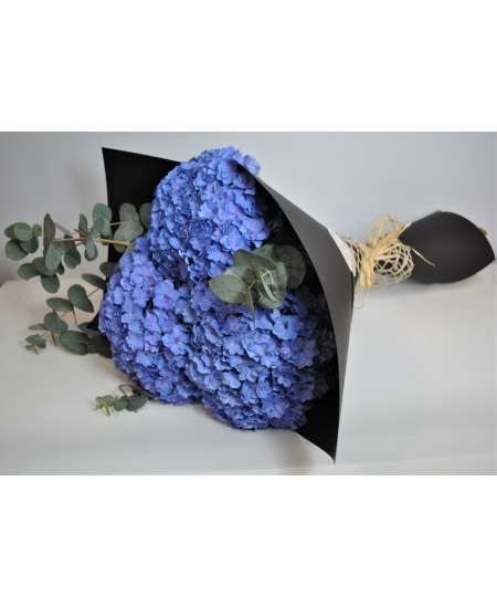 Bouquet of 3 violet hydrangea in black craft paper