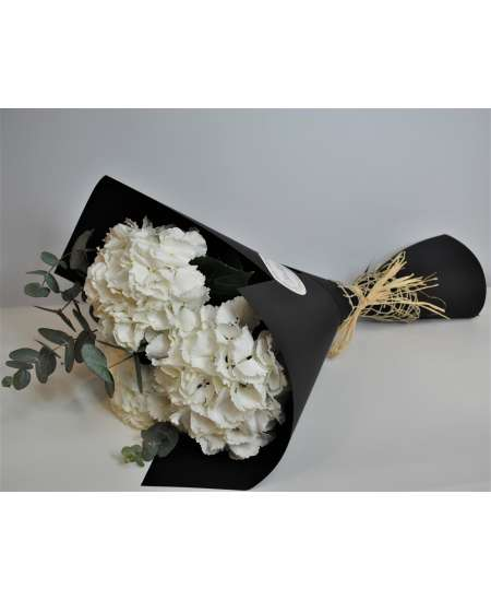 Bouquet of 3 white hydrangeas in black paper