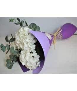 Bouquet of 3 white hydrangeas in purple paper