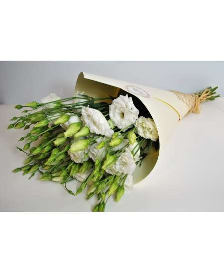 Bouquet of 11 white eustomers in cream craft