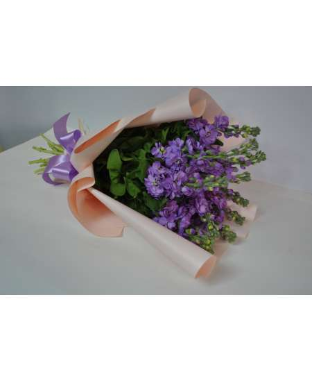 Bouquet of 11 purple matiola in pink paper