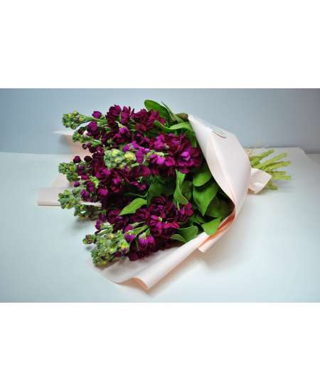 Bouquet of 11 malini matiola in pink paper