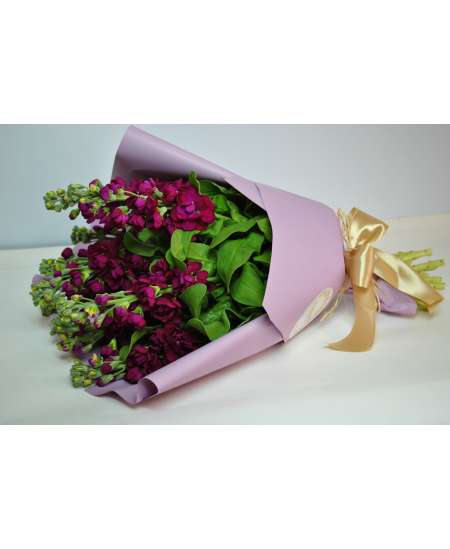 Букет из 11 малиновых Матиола в фиолетовой бумаге