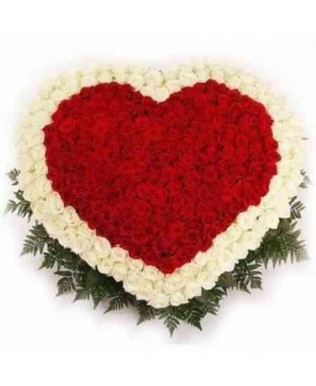 Inimă din 251 trandafiri