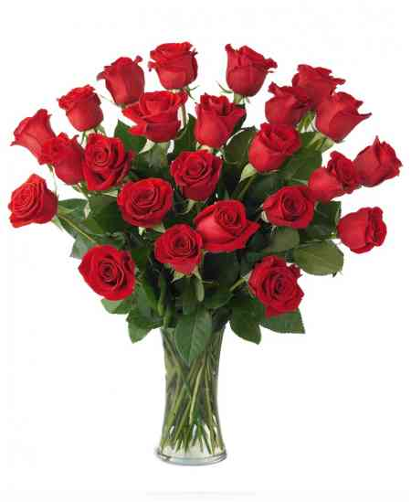 Buchet din 25 trandafiri roșii 60-70cm