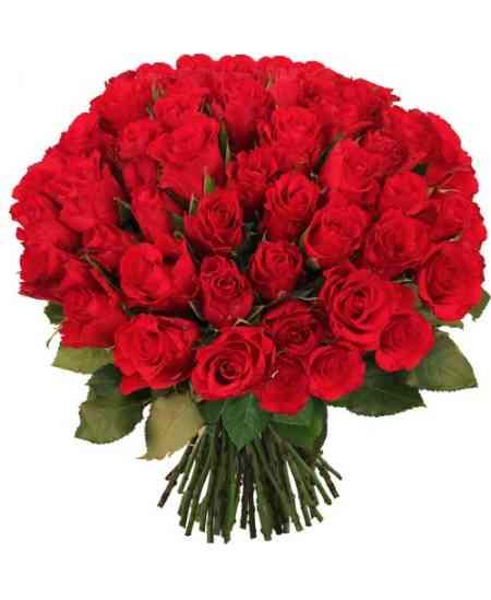 Buchet din 51 trandafiri roșii 60-70cm