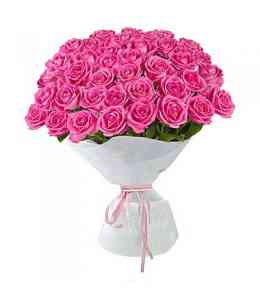 Bouquet of 51 pink roses 60-70cm