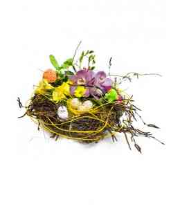 "Composition of flowers ""Quail's Nest"""