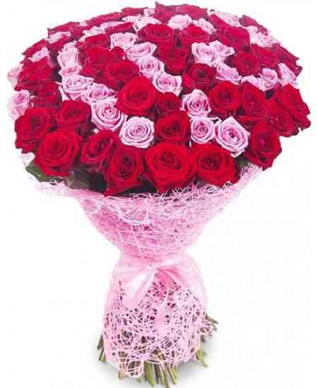 "101 Trandafiri roșii și roz ""Olanda"" 80-90cm"