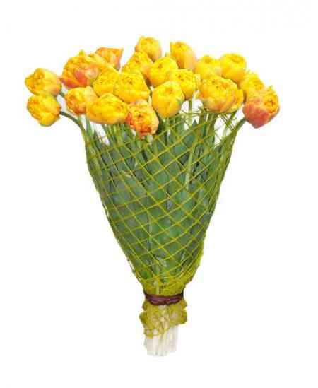 Букет из 21 махровые тюльпаны
