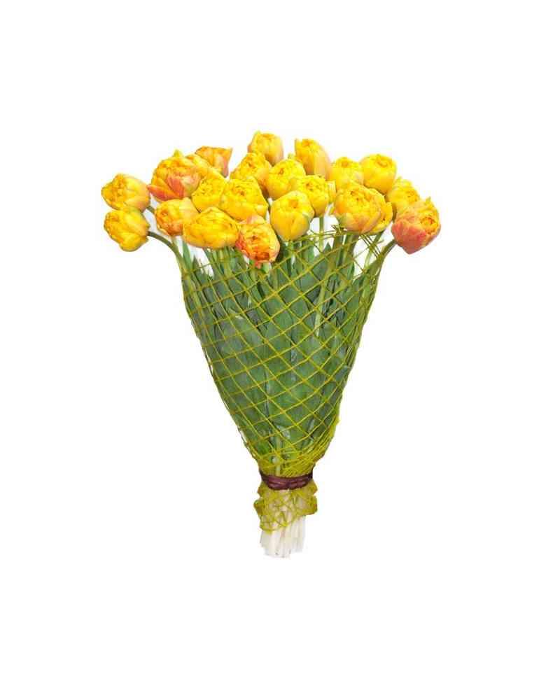 Круглосуточный оптовый рынок цветов в кишиневе — 6