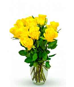"Желтые розы ""Нидерланды"" 30-40см"