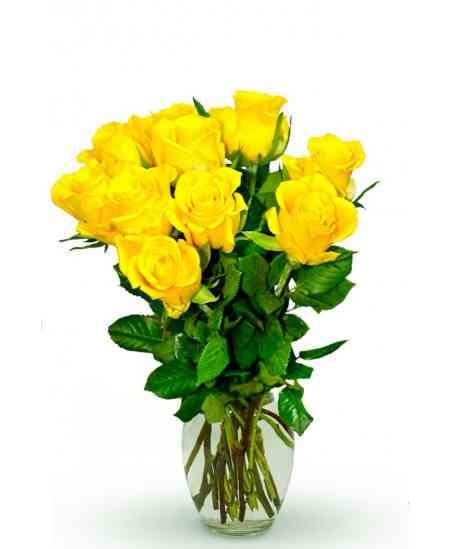 """Trandafiri galbeni """"Olanda"""" 30-40cm"""