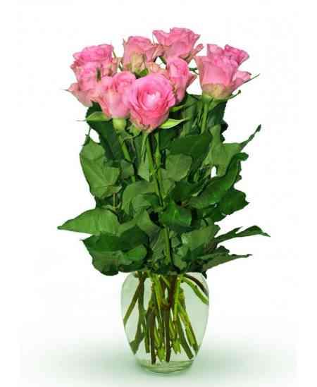 """Trandafiri roz """"Olanda"""" 30-40cm"""