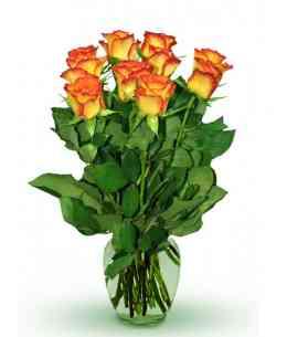 "Trandafiri portocalii ""Olanda"" 30-40cm"