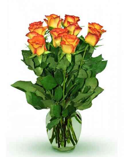 """Оранжевые розы """"Нидерланды"""" 30-40см"""