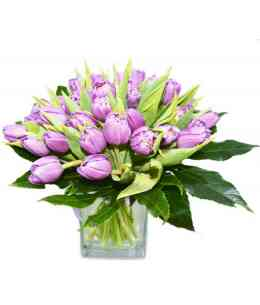Bouquet of 35 Double tulips