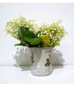 Composition of Lily of the valley in the box