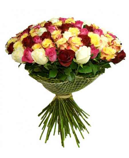 "101 multicolored roses ""Netherlands"" 80-90cm"