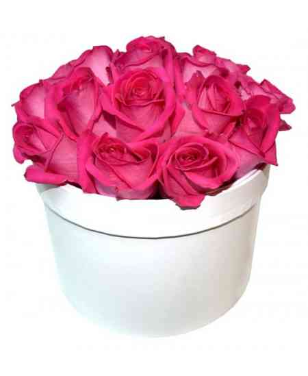 Box of 17 pink roses