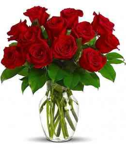 """Красные розы """"Нидерланды"""" 30-40см"""
