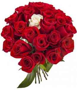 Bouquet of red and white roses
