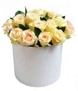 Cutie albă din trandafiri albi