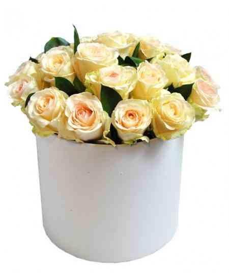 White box of white roses