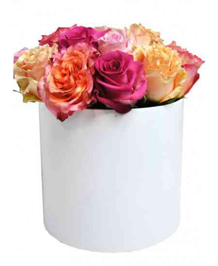 White box of multicolor roses