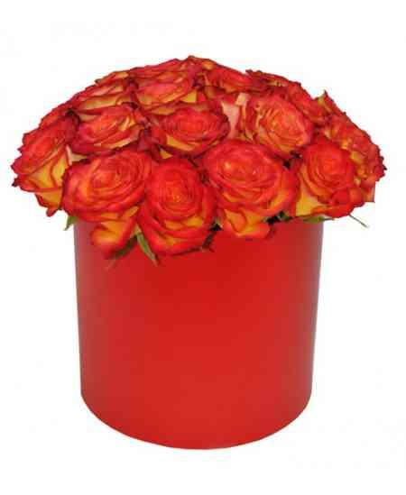 Коробка из 25 красных-оранжевых роз