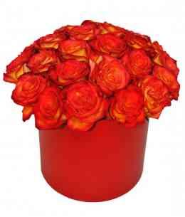 Коробка из 35 красных-оранжевых роз