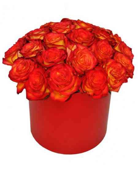 Cutie din 25 trandafiri roșu-orange