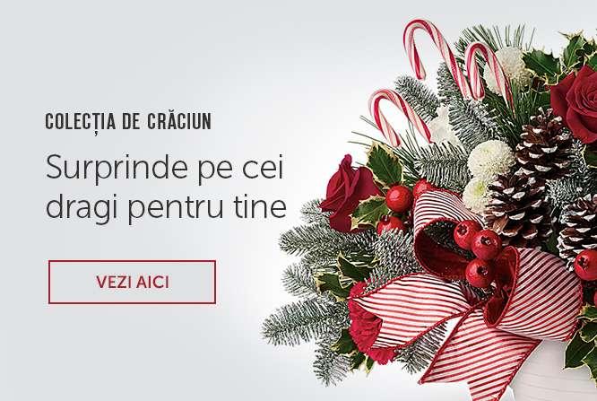 Christmas / New Year