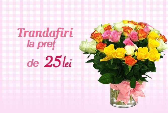 Ofertă Trandafiri la preț de 25 lei/buc